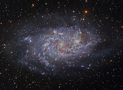 M33 NGC 598 The Triangulum Galaxy (LRGB) (Terry Hancock www.downunderobservatory.com) Tags: camera sky color monochrome field wheel night stars spiral photography mono pier backyard fotografie williams photos thomas space shed science images off astro bach observatory telescope ngc598 filter galaxy m33 terry astronomy imaging triangulum pinwheel hancock messier ccd universe cosmos axis paramount luminance optics tmb osc teleskop astronomie byo deepsky guider starlightxpress flattener Astrometrydotnet:status=solved qhy5 130ss Astrometrydotnet:version=14400 at2ff mks4000 qhy9m gt110s wwwdownunderobservatorycom Astrometrydotnet:id=alpha20120371421329 wo68mm