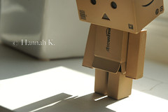 """Me? My shadow? Mine?"" (© Hannah K.) Tags: k amazon hannah figure figurine danbo amazoncojp captaincute danboard hannahkoller"