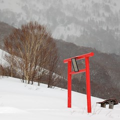 Winter, Hachimantai (jasohill) Tags: park winter red white mountain snow nature japan landscape japanese shrine mine scene national backgrounds  shinto  torii    tohoku slope 2012 hachimantai  flickrstruereflection1