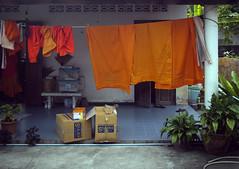 wats (mr. Wood) Tags: orange thailand buddha samui mummy wat watkhunaram mummifiedmonk byddhism watratchathammaram watlamai