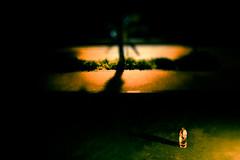 And The World Melts Away (Hans Maso) Tags: park woman man night canon dubai candid 85mm 5d markiii ef85mmf12liiusm canoneos5dmarkiii
