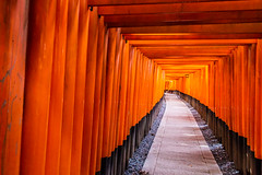 Fushimi Inari Shrine  [explored] (Gigin - NoDigital) Tags: orange nature fruits japan buildings temple kyoto places geography locations fushimiinarishrine kyotoprefecture