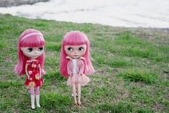 ichigo twin