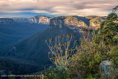 Point Pilcher (Gary Hayes) Tags: australia bluemountains medlowbath pointpilcher