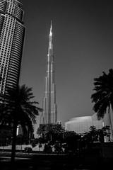 IMG_0611.jpg (svendarfschlag) Tags: dubai uae emirates arab emirate unitedarabemirates  burjkhalifa vereinigtenarabischenemiraten