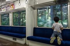 Tarumi Line #2 (Yorkey&Rin) Tags: boy japan may olympus gifu rin  2016  em5 tarumirailway tarumiline  olympusmzuikodigitaled1250f3563ez t5140559
