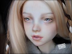 L'armoire de Dandan Nightingale (Human Beans) Tags: storm fantasy bjd abjd nightingale faceup humanbeans adadan dollbakery texturedfaceup larmoirededandan