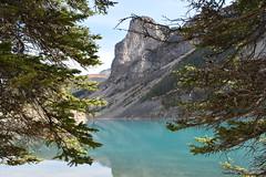 Nature's Picture Frame (Stephen Guilbert) Tags: sky mountain lake canada mountains color tree nature colors pine nikon alberta banff alpinelake moraine naturephotography morainelake canadianrockies lakemoraine