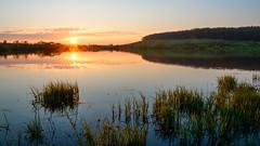 sunset (kosachyov) Tags: sunset sun lake reflection water clouds landscape spring pond nikon horizon may  d7100