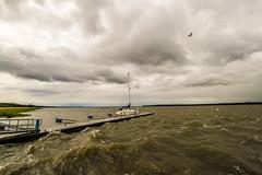 DSC07180 (fidel_barto) Tags: bird clouds germany landscape deutschland boot boat outdoor sony balticsea landschaft ostsee usedom sonyalphaslta58