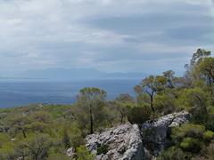 (Anna Voulgari) Tags: sea islands greece pines attiki salamina summeringreece