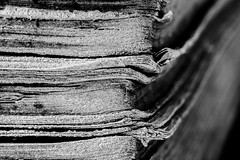 Mein Lieblingsbuch_My favourite book (photalena) Tags: bw detail macro book struktur