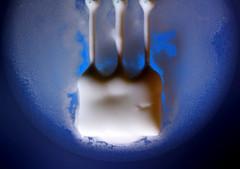 toothopicks and yoghurt_004 (cees van gastel) Tags: macro toothpicks yoghurt tandenstokers extensionrings canon1855mmkitlens ceesvangastel canon40d