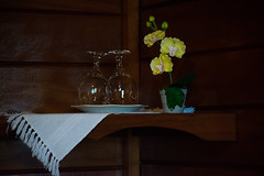 Unio (maybfotografia) Tags: trip dog cold minasgerais green love beer yellow photo nikon peace mg photograph monteverde fotografia beijaflor frio outono lareira d5300