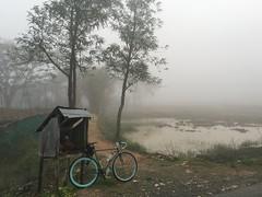 Myanmar, Yangon Region, Southern District, Twantay Township (Die Welt, wie ich sie vorfand) Tags: bicycle fog cycling yangon myanmar steamroller surly rangoon southerndistrict twantay yangonregion twantaytownship