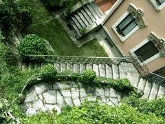 Stairs (kauppvi) Tags: italy como olympus uz sp550