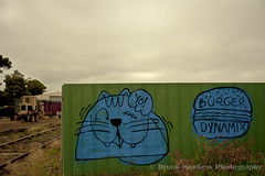 Pirate Cat + Burger Dynamix (Drunk Monkeys) Tags: burger kitty gore lush melbournegraffiti