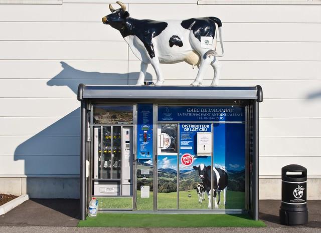 distributeur de lait cru