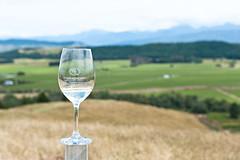 Tour around vineyard