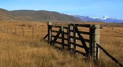Secure (Tones Corner) Tags: fence landscape gate scene grassland nzscene hakatere nzscenic nzrural
