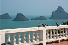 Pigeon's Eye View (Ursula in Aus (Away)) Tags: mountains bird fence thailand view pigeon railing  prachuapkhirikhan bayofthailand  earthasia totallythailand  khaochongkrajoki
