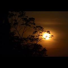 พระอาทิตย์ ขึ้นที่คลองทรายรีสอร์ทวันที่22