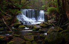 Mount Field, Tas. (Fasene) Tags: waterfalls tasmania mountfield