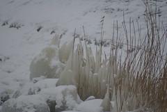DSC06025 (Schep_B) Tags: closeup sneeuw ijspegels markermeer ijsschotsen kruiendijs deblocqvankuffeler