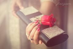 Happy Valentine's Day-