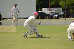 tokina cricket 028 (mushu2011) Tags: cricket redlands atx300afpro