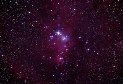 NGC 2264 The Christmas Tree Cluster and the Cone Nebula II (Chuck Manges) Tags: sky night canon stars star space cluster telescope galaxy nebula astrophotography orion astronomy meade Astrometrydotnet:status=solved Astrometrydotnet:version=14400 Astrometrydotnet:id=alpha20120284994440