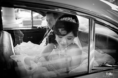 Story (Qiao.Wei) Tags: friends blackwhite weddingday weddingphotography 35mmf14 canon5dmarkii canberraphotographer