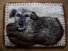 Felt Pembury (Libby Hall Dog Photo) Tags: dog dogs felted pembury needlefelted libbyhall