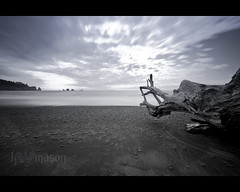 First Beach driftwood ([nosamk] KMason photography) Tags: ocean trees sky usa sun sunlight seascape beach water rock clouds landscape washington sand waves pacific branches indian tide low explore pebble driftwood wa reservation lapush interestingness225 ndx1000 quileute nikonafsnikkor1635mmf4gedvr