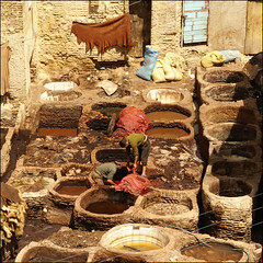 dye-baths (atsjebosma) Tags: men leather colours leer morocco fez medina colourful marokko fes kleurrijk kleuren dyebaths atsjebosma verfbaden coth5 mygearandme mygearandmepremium mygearandmebronze