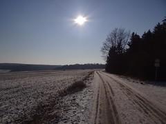 just another perfect day in Hesse (JoannaRB2009) Tags: road blue trees winter sky snow nature germany alley path natura avenue zima niebieski droga aleja śnieg hesse przyroda niebo drzewa niemcy calden ścieżka wilhelmsthal kalden hesja