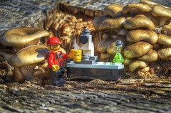 "HJackman_Week17_""Coffee"" - ""Shrooms and Brew"" (sumoetx) Tags: coffee photoshop utah nikon lego hdr legoman week17 photomatix utahphotographer nikonhdr legomug nikond7000 lensprotogocom lptg legocoffee d7000hdr nikond7000hdr lensprotogocom52weekchallenge"