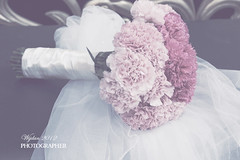 1# (  | WIJDAN Abdulaziz) Tags: pink wedding light flower canon lens photography natural mm 50   abdulaziz  ||   wijdan     d5||