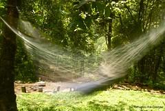 Rock a bye baby ... (trdastidar) Tags: longexposure india children nikon raw child kerala swing hammock wayanad kalpetta meppadi d80 lanternstay