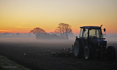 Tractor at dawn (yvonnepay615) Tags: uk mist tractor nature lumix dawn norfolk panasonic g1 45mm eastanglia