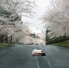 closer to the edge (londonscene) Tags: road new york sky white cold girl canon campus cherry dress blossom butterflies purchase cowering