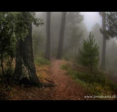 Parque Natural de la Sier