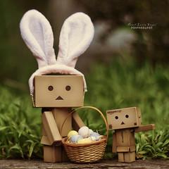 Hoppy Easter! (.OhSoBoHo) Tags: danbo danboard danboeasterbunny danbophotography love easter bunny theearsaresnippedoffacrappytoyfromgoodwillandmadeintoaheadband theminibaskedipickedupagesagoingoodwillfor20c theminieggsaregone thereweremorebutwecouldntresistoops danbotheeasterbunny canon canoneos40d 50mm revoltech yotsubaandi manga kawaii danbolove