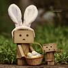 Hoppy Easter! (.•۫◦۪°•OhSoBoHo•۫◦۪°•) Tags: danbo danboard danboeasterbunny danbophotography love easter bunny theearsaresnippedoffacrappytoyfromgoodwillandmadeintoaheadband theminibaskedipickedupagesagoingoodwillfor20c theminieggsaregone thereweremorebutwecouldntresistoops danbotheeasterbunny canon canoneos40d 50mm revoltech yotsubaandi manga kawaii danbolove