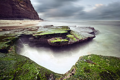 C h a s m s (Lee Sie) Tags: ocean california longexposure sea sky white seascape storm seaweed green beach water rock clouds coast moss stream waves pacific sandiego cloudy overcast wideangle sealife cliffs wash kelp oceanbeach reef tidepool tidal sunsetcliffs pointloma barnicles uwb oceanscape
