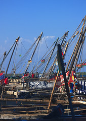 Dhow Masts In Lamu Port, Lamu, Kenya (Eric Lafforgue) Tags: africa color vertical island photography boat kenya culture unescoworldheritagesite afrika mast tradition lamu swahili afrique eastafrica mawlid quénia lamuisland lafforgue traveldestination kenyaafrica ケニア quênia transportationtransport كينيا 케냐 кения 119759 keňa exterioroutdoors 肯尼亚 κένυα tradingroute кенијa maulidifestivalbarazacultureculturalgathering nobodynopeople dhowboatwoodenjahazi