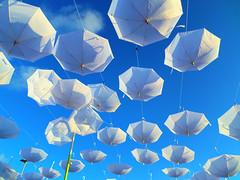 Por si llueve de abajo para arriba... (GabitAmezcua) Tags: mxico umbrella cancun sombrilla malecn