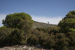 Garraf Fotoviva (http://www.fotovivaonline.com/) Tags: barcelona spain natura taller catalunya garraf paisatge itinerari tallerdefotografia fotoviva tallerfotogrfic ferrantaberner itinerarifotogrfic itinerarifotoviva
