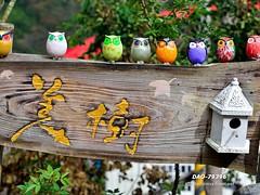 DAO-79396 (Chen Liang Dao  hyperphoto) Tags: taiwan