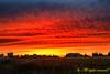 Sunset in Amman غروب الشمس في عمّان (Saeed Nassbeh) Tags: trees sunset sky nature clouds landscape amman jordan الطبيعة الغروب سماء غيوم مزرعة طبيعة غيم الأردن شجر غروبالشمس مزارع السماء عمّان أشجار غروب،